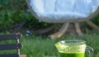 Détox Oleatherm - Jus vert hamac