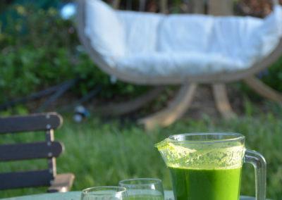 Détox Oleatherm - Jus vert hamac-hamac